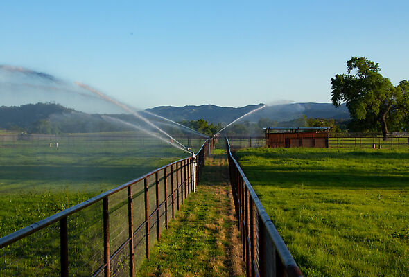 An automated Big Gun Sprinkler system is a perfect solution for high-end horse ranches.