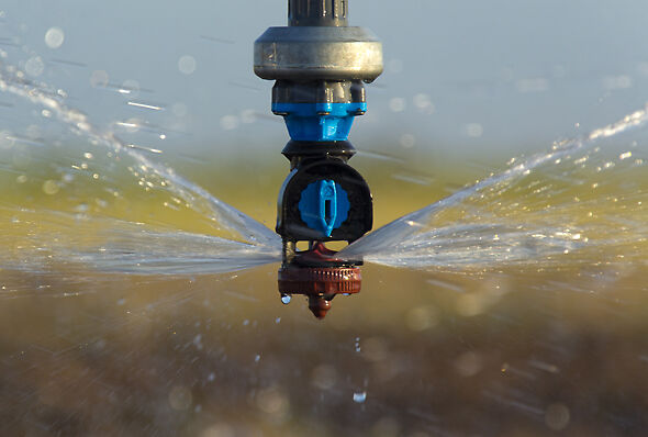 Nelson Irrigation Accelerator sprinkler irrigating