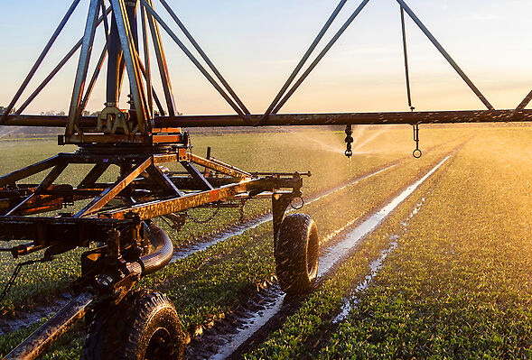 Part-circle Rotator® and Spinner sprinklers keep water on the crops where it belongs.