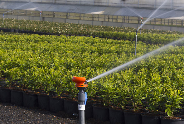 Nelson R33 Sprinkler system irrigating a nursery container yard
