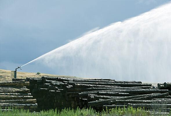 Big Gun Sprinklers bring the wide water coverage that's essential in log yards.