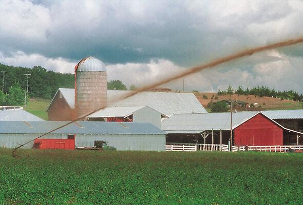 Nelson Big Gun irrigating with farm wastewater